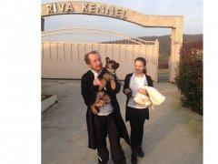 B serisinden Bingo von  Team Riva, yeni ailesi ile birlikte...