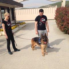 Çiftliğimiz köpeklerinden defalarca derece almış olan  EROS , yeni ailesi ile birlikte